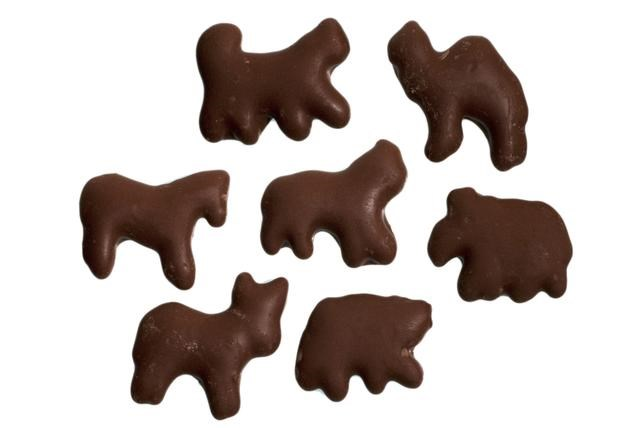 chocolade frogs