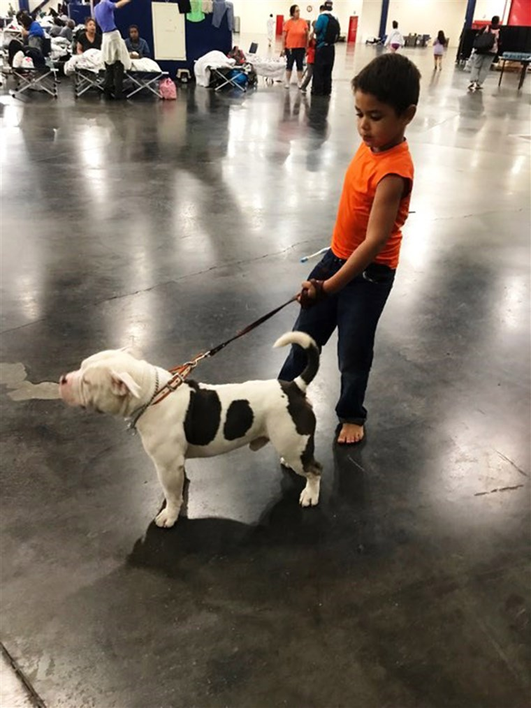 EN boy and his dog at the George R. Brown Convention Center in Houston.
