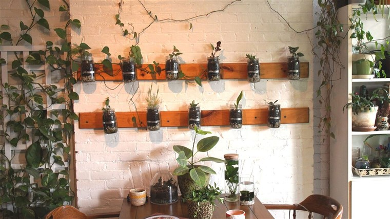 Oakes' Mason jar garden was her first DIY project with her father.
