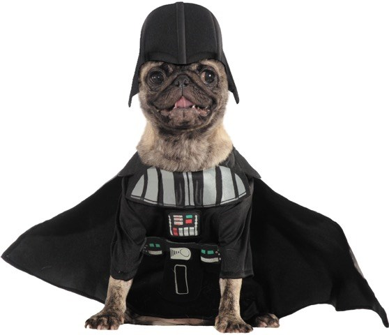 Personagens from Star Wars: The Force Awakens are popular pet costumes