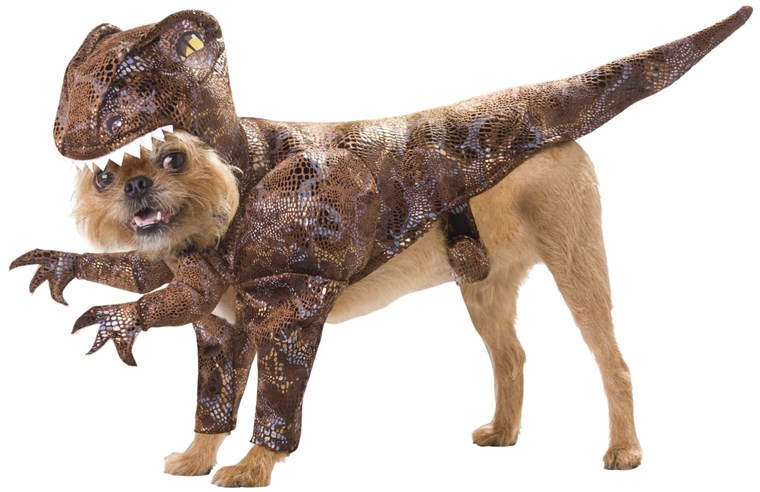 Cães can blend into Jurassic World with these dinosaur halloween pet costumes
