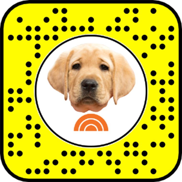 Odblokować the TODAY Puppy Snapchat Lens